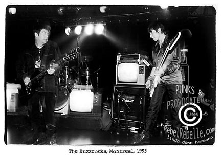 The BUZZCOCKS 1993